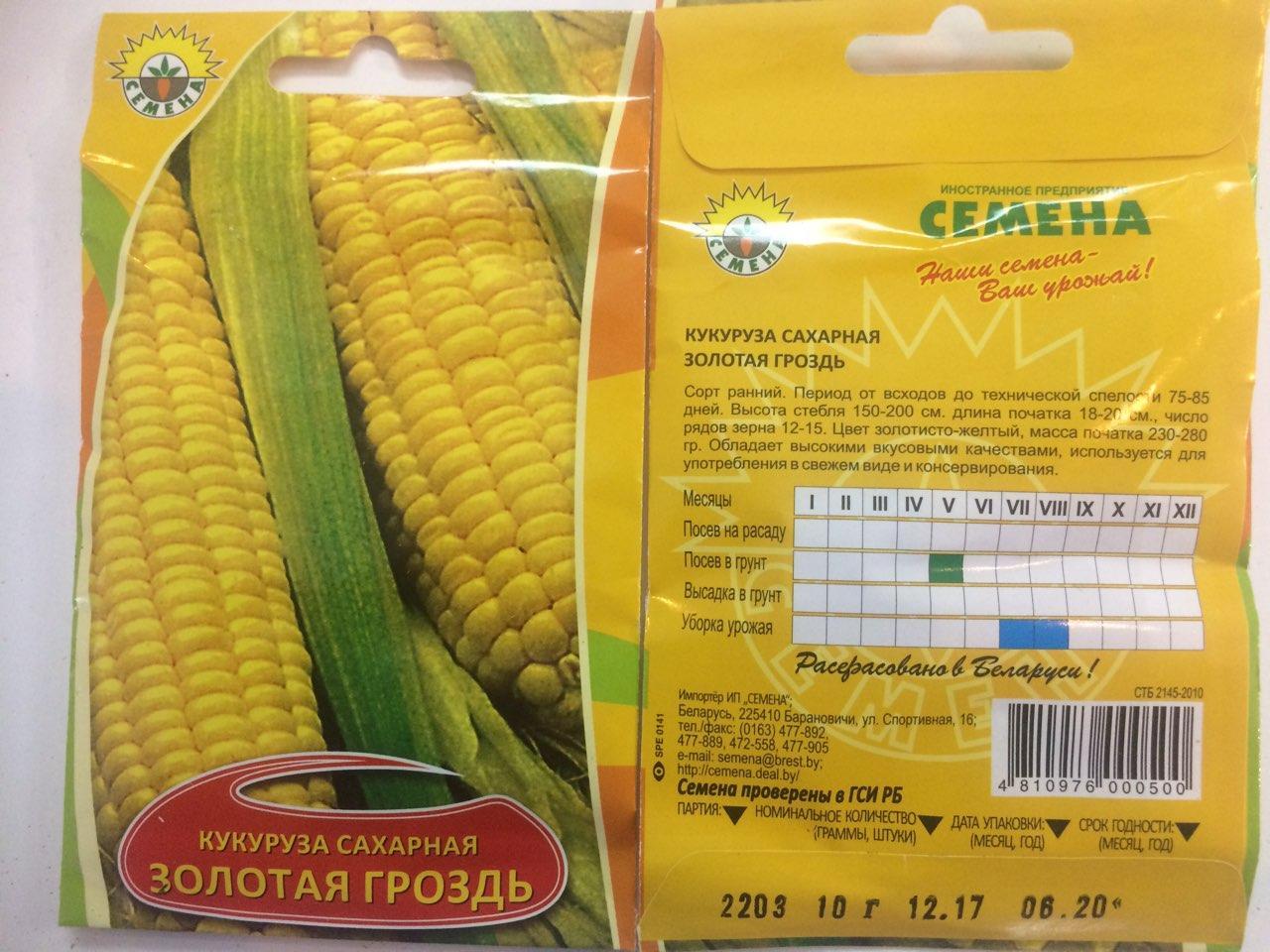 Как получить семена кукурузы в домашних условиях: отбор, сбор, хранение 46